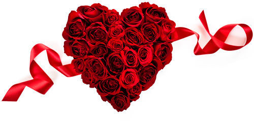 Red heart-shaped bunch of roses viewed from the top with a scrolling red ribbon behind them